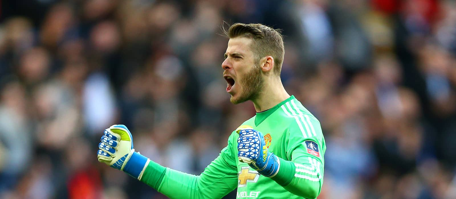 Video: David de Gea's passionate celebration after Anthony Martial winner vs Everton