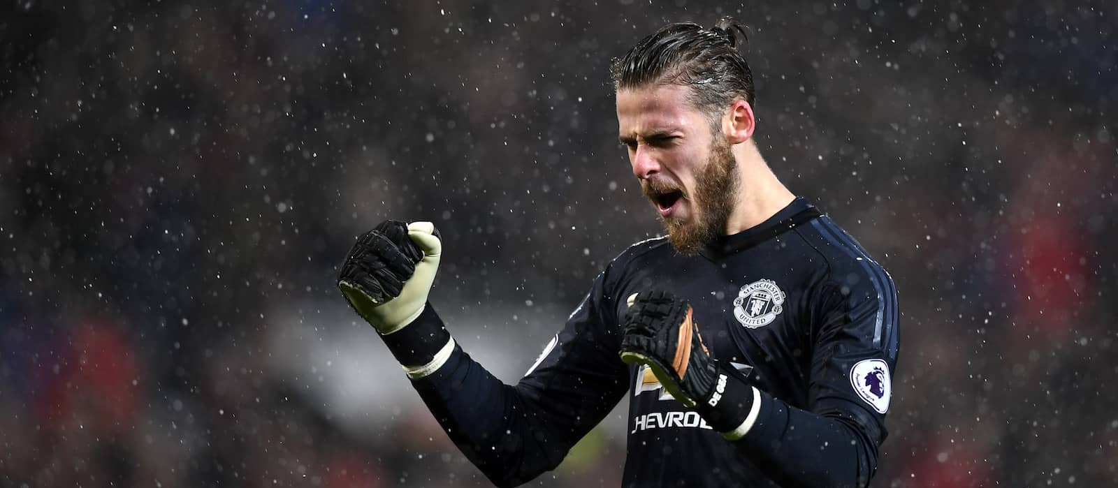 Manchester United's David de Gea asks for Real Madrid move: report