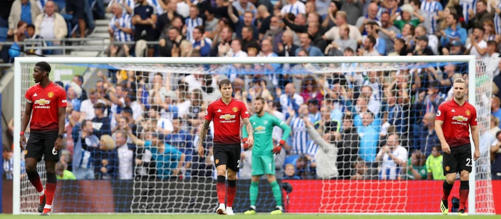 Video: Dimitar Berbatov sends Manchester United players message of motivation following Brighton defeat