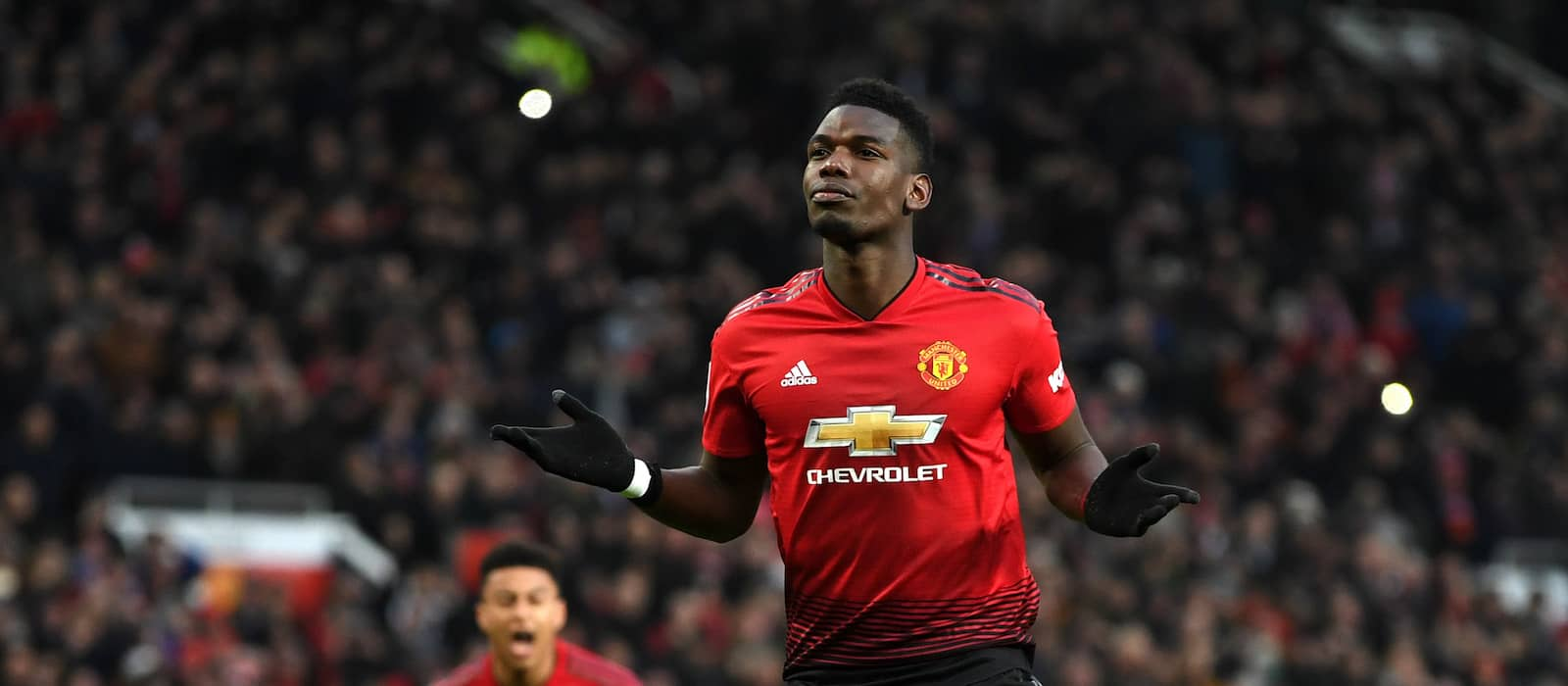 Zlatan Ibrahimovic:  Paul Pogba is free under Ole Gunnar Solskjaer